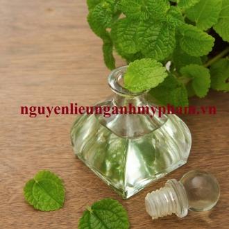 Tinh dầu bạc hà chất lượng cao - Cung cấp tinh dầu bạc hà giá sỉ tốt nhất thị trường