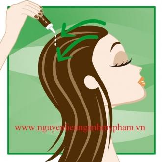 Bán Hoạt chất chống rụng tóc Kapilarine – Cung cấp Tinh chất ngăn ngừa và chống rụng tóc Kapilarine