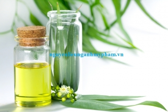 Bán Tinh dầu bạch đàn chanh - Cung cấp tinh dầu thiên nhiên giá sỉ tốt nhất thị trường
